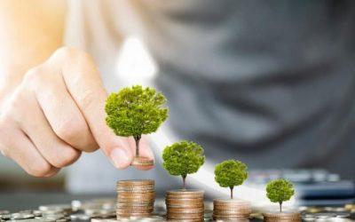Exceso de Ahorro: A dónde ha ido y por qué. ¿Existe en España una buena cultura financiera?